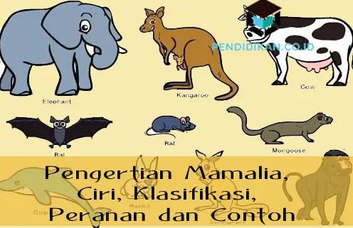 pengertian-mamalia